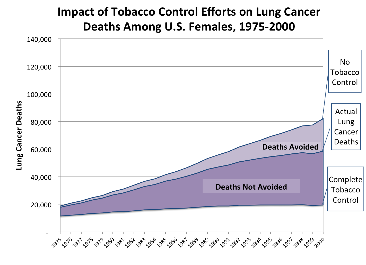 Tobacco control and lung cancer in women