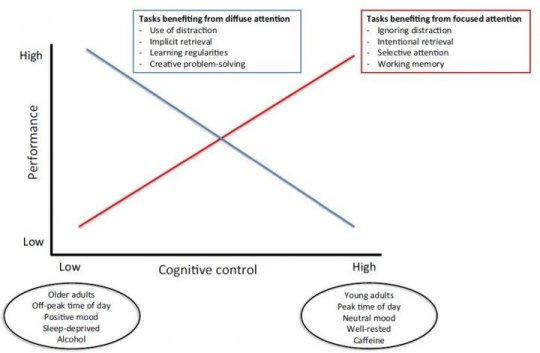 Performance and Cognitive Control