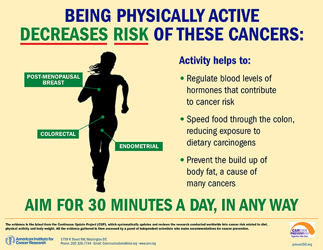 Activity and Cancer Prevention