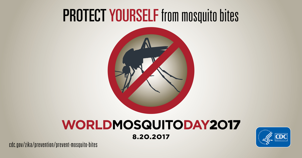 World Mosquito Day