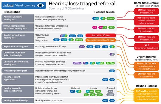 Hearing Loss Triage